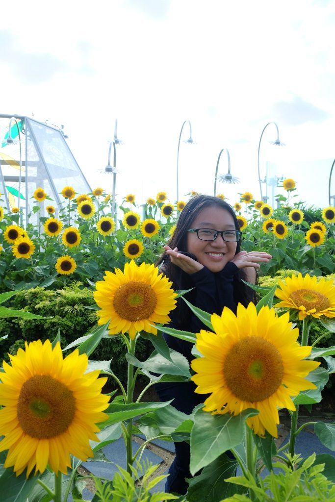 sunflower garden changi
