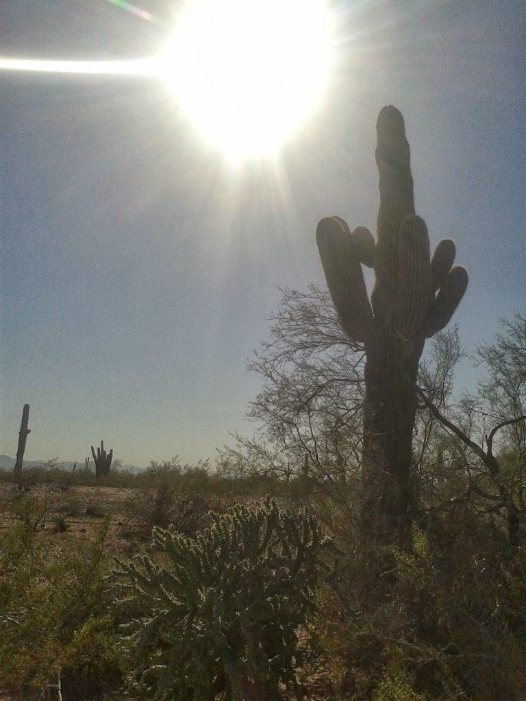 summer arizona