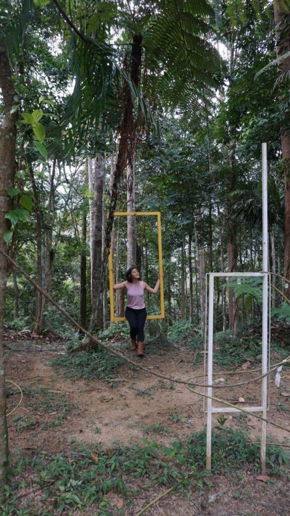 fashion forest