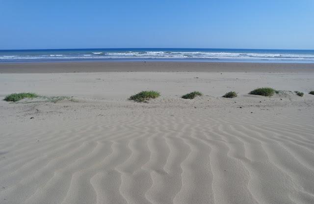 Pantai-Oetune