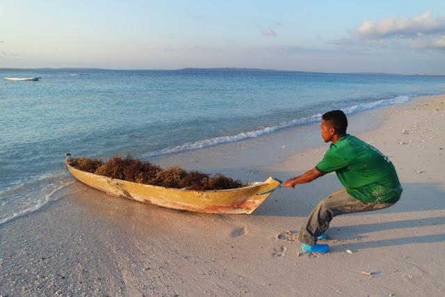 Pantai-Tablolong-Kupang