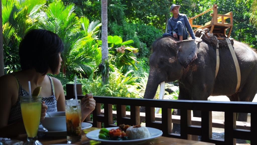at Bali Zoo Gianyar