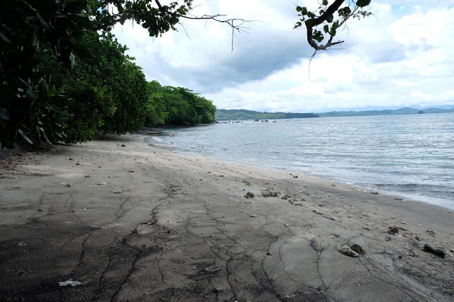 pantai-tangkoko