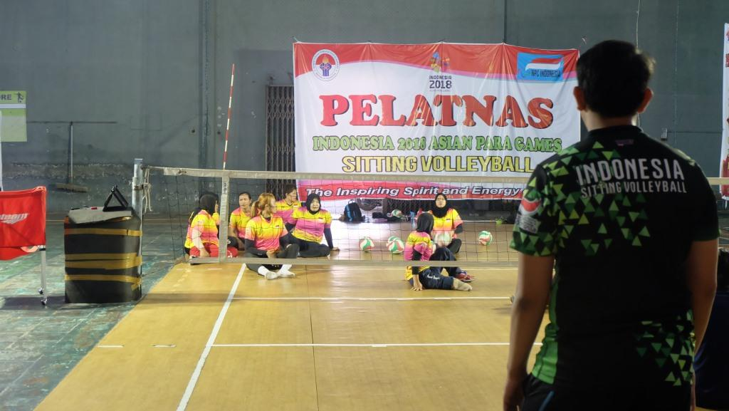 voli duduk indonesia