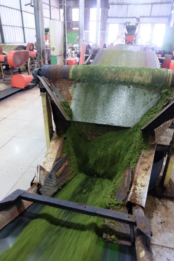 pabrik kayu aro